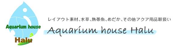 Aquarium house Halu